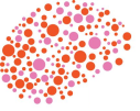 Square Brain Logo